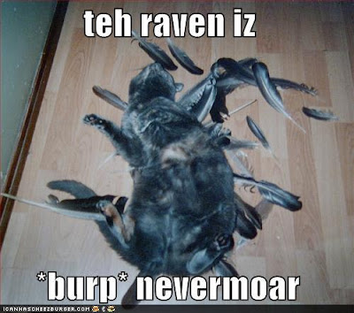 grey cat on its back in a pile of feathers. teh raven is burp nevar moar