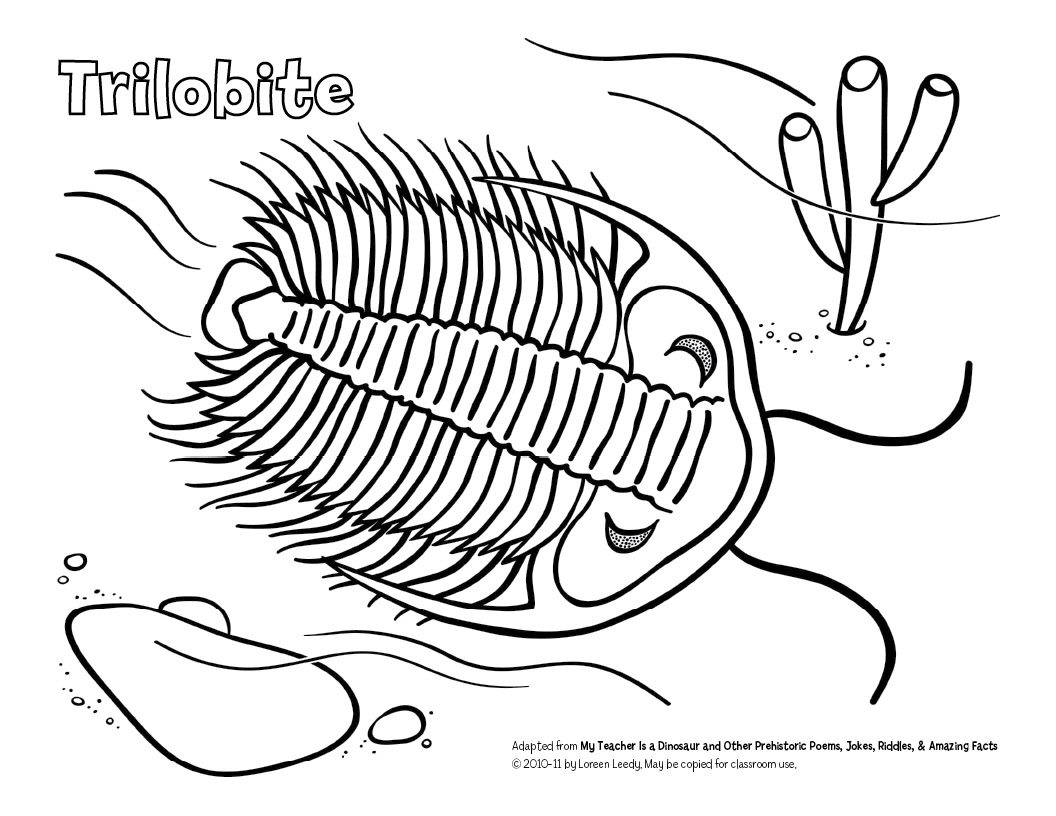Loreen leedy books more free trilobite coloring page for Fossil coloring pages