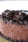 :: Chocolate Cake ::
