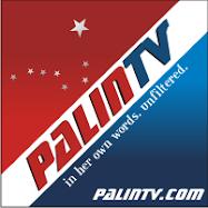 Palin TV