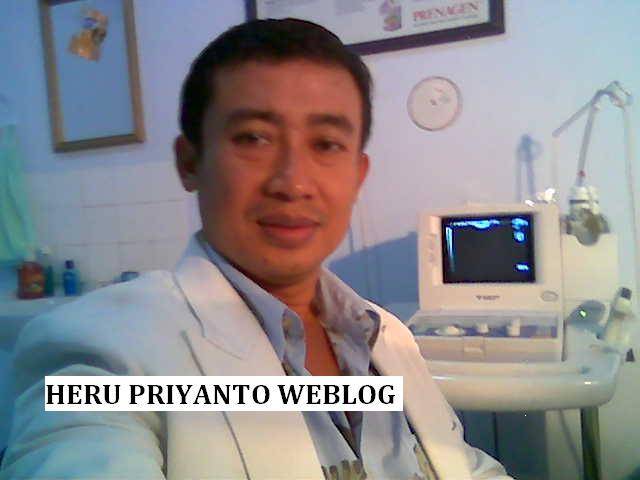 Heru Priyanto Weblog