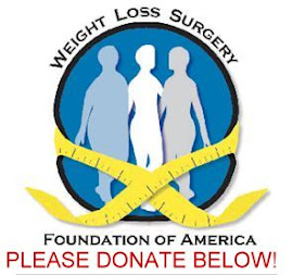 Donate to the WLSFA!
