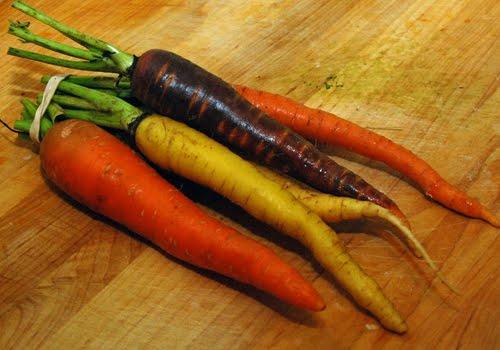 [carrots.jpg]