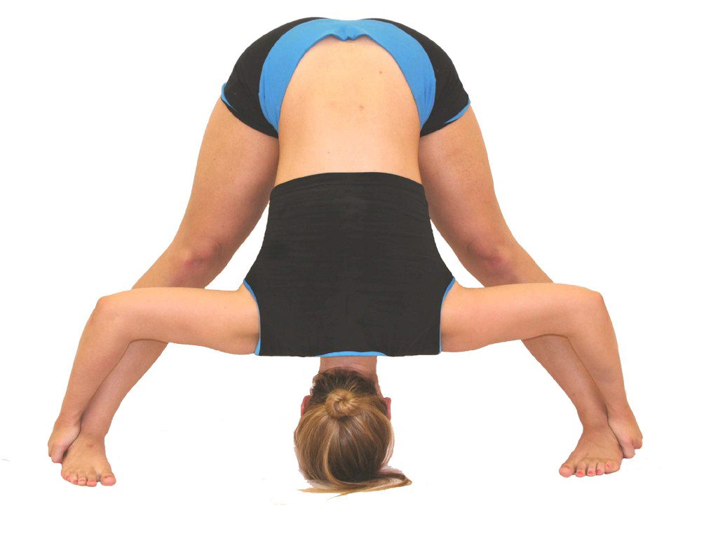 Shoulder Exercises for Strength and Flexibility Shoulder Exercises for Strength and Flexibility new picture