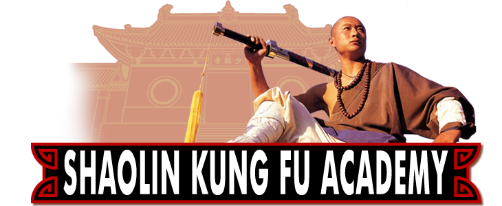 Houston Shaolin Kung Fu Academy