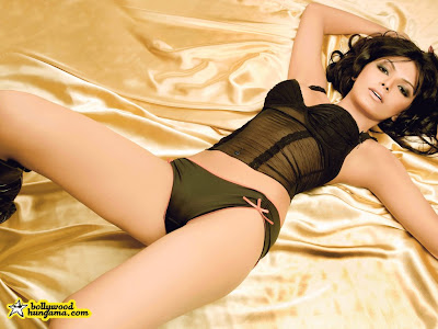 Sherlyn Chopra photo