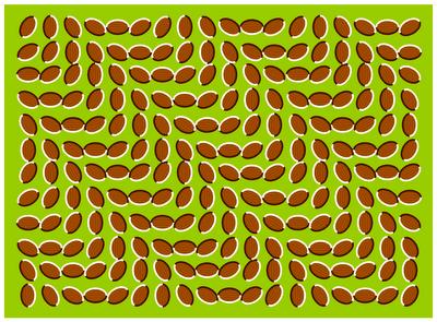 Gambar Bergerak on Sebenarnya Gambar Ini Tidak Bergerak Sama Sekali