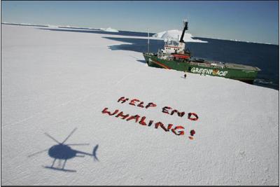 Grenpeace Ships Arctic Sunrise