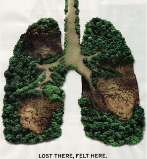 earth lung paru-paru dunia