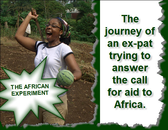 The African Experiment