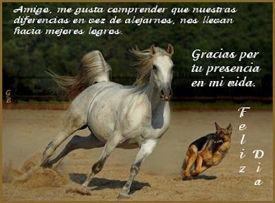 Tarjetas Dia del amigo Imagen8