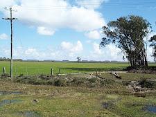 Propriedades de terras