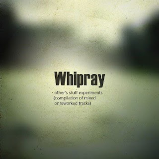 Whipray - The Other&#39;s stuff experiments - compilation of mixed or reworked tracks