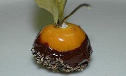 Chilli-chocolate dipped physalis with cracked black peppercorns