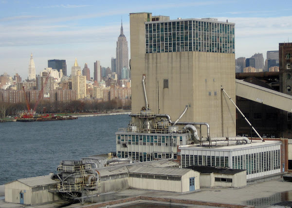 Doomed Domino Plant - On the East River in Williamsburg, seen from the Williamsburg Bridge.
