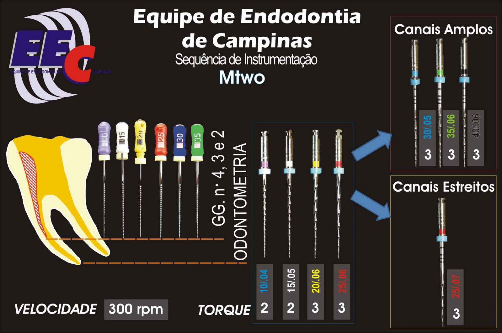 EQUIPE DE ENDODONTIA DE CAMPINAS: Protocolo de Limas ...