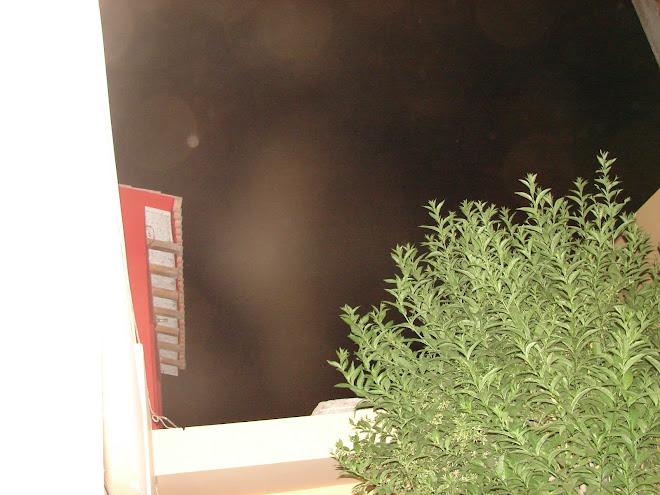 Avistamiento Alien gris rodeado de Caneplas y Esferas Luz 13/1/2010 hrs:12:12:23 Huacho
