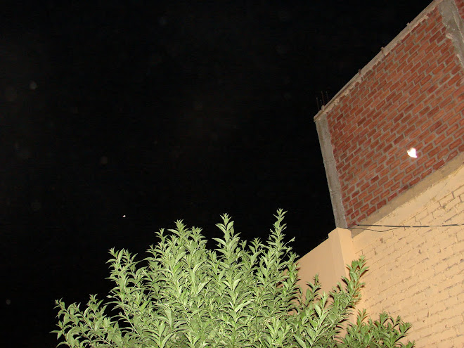 ''La CAMPANA'' 3ra x tercera vez en la pared de ladrillos 15/enero/2010 hrs:10:19:03 pm Huacho