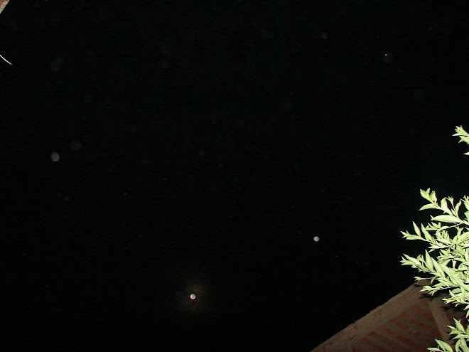 Ultimo Avistamiento Ovni Alineamiento Lunar 29/enero/2010  y???