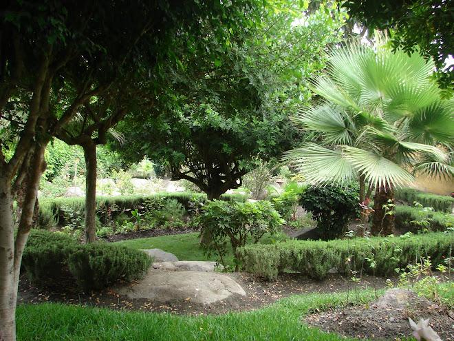 Shambala Santa Rita