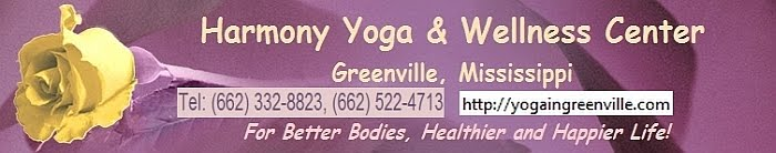 Harmony Yoga & Wellness Center
