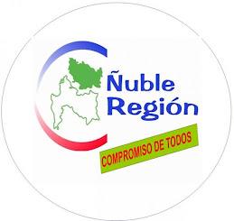 Arzola con Ñuble Región
