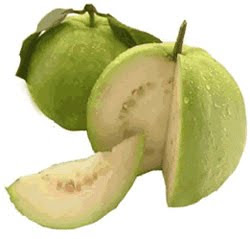 Jambu batu - guava benefits for health