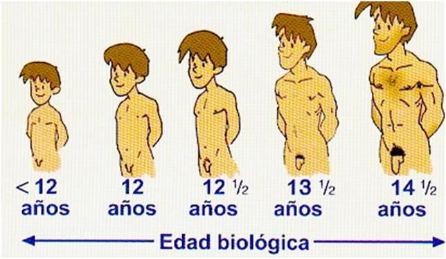 Chico Adolescente Rubio Imágenes De Archivo,