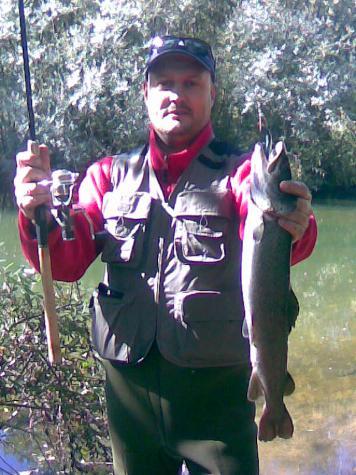 Salmon del Danubio (Hucho- Hucho)