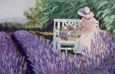 Lavender La Drôme