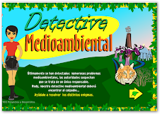DETECTIVE MEDIOAMBIENTAL