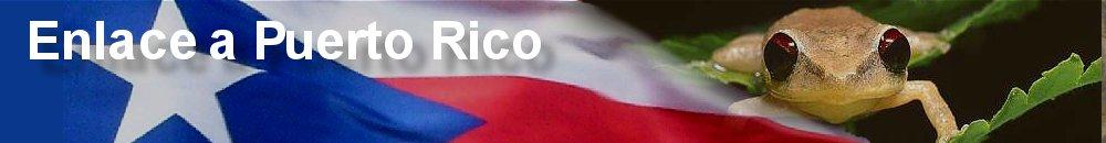 Enlace a Puerto Rico