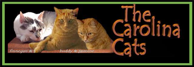 2Carolina Cats