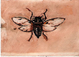 C is van Cicade