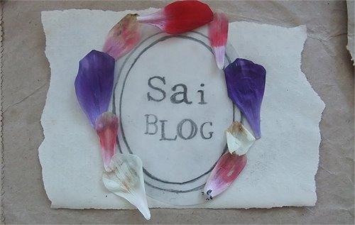 Sai blog