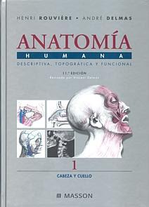 Anatomía humana Rouviere pdf free download
