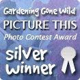 First Runner Up GGW Photo Contest