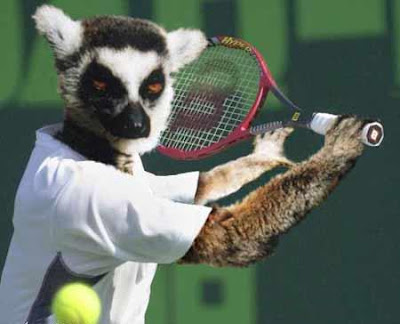 Crazy Sports: Crazy Funny Animal Olympics