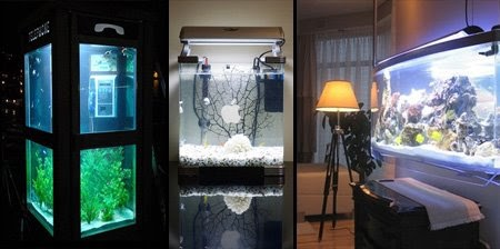 15 Awesome And Modern Aquariums UNUSUAL THINGs