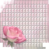 Rose Mosaic ecg