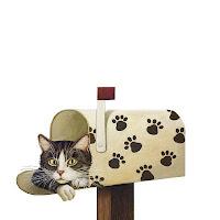 Cat in Mailboxecg