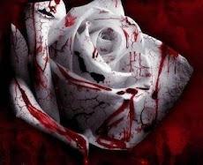 Se puede pasar la vida entera buscando los despojos de un alma muerta...