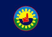 Bandera de Berisso