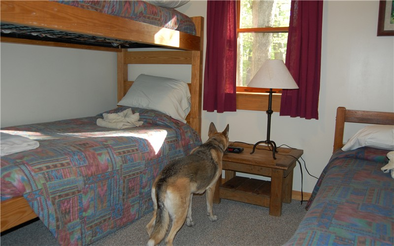There Are Different Cabins With Different Features And Camping Facilities.  Click Here For More Information On Accommodations At Douthat State Park.