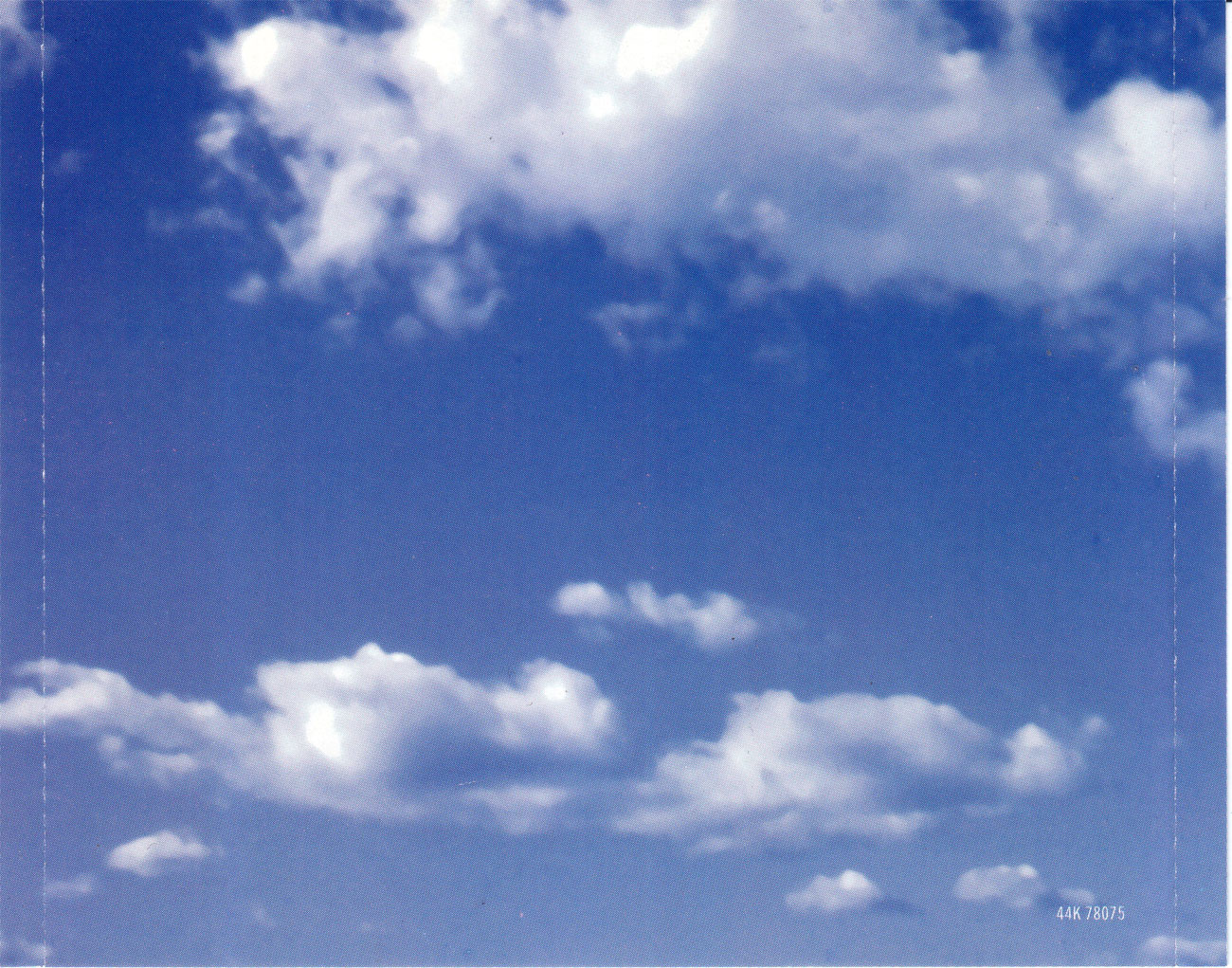 http://1.bp.blogspot.com/_JpUTfTcW8hA/TADu4zk_qfI/AAAAAAAABOk/HpBfbiMirS4/s1600/BackInlay.JPG