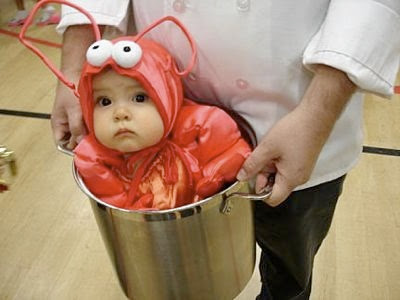 lobsterbaby1-1-tm.jpg