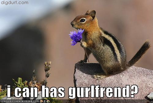 [funny-pictures-squirrel-girlfriend1.jpg]