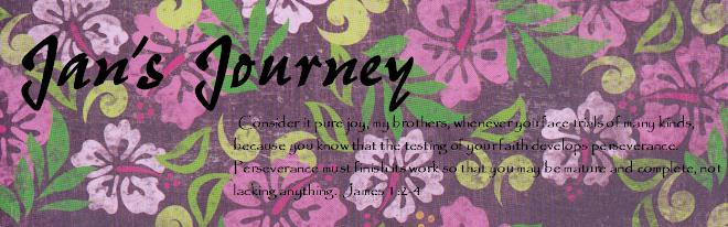 Jan's Journey