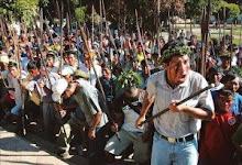 LUCHA PUBLOS AMAZÓNICOS