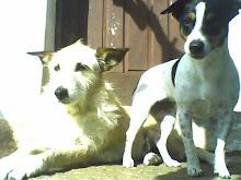 Sol e Valentina